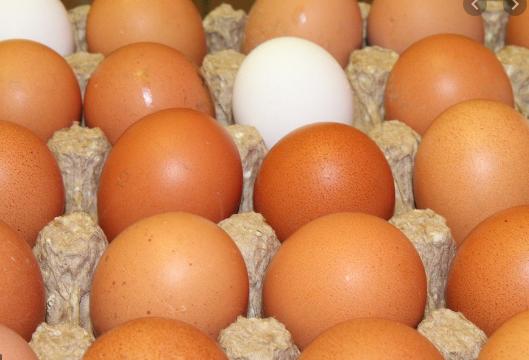 Au milieu de la pénurie d'œufs en Israel pour Pessah, les chefs israéliens préparent des alternatives avec de super recettes !